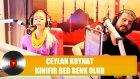 Ceylan Koynat - Kınıfır Bed Renk Olur
