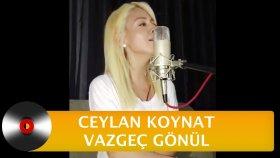 Ceylan Koynat - Vazgeç Gönül