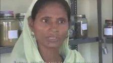 Uttar Pradesh Muslıms Unıted Under Bsp Agaınst Modı