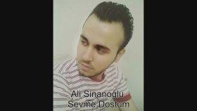Ali Sinanoğlu-Sevme Dostum Damar  2017