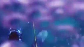 Zıpkınlı Dalgıça Hızla Saldıran Köpekbalığı