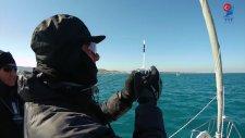 Türkiye Yelken Federasyonu - Yelken Yarışları