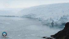 Antarktika'daki Çatlak Hızla İlerliyor