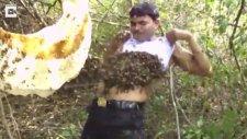 Arılara Fısıldayan Adam