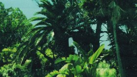 Calvin Harris - Ft. Frank Ocean