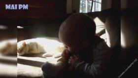 Bebeklerle Vakit Geçiren Kediler ve Köpekler
