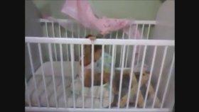 Beşiğinin Altına Gizli Geçit Yapan Bebek