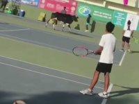 Hindistan'daki Tenis Maçında Korta Giren İnek