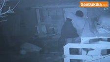 Kar Maskeli Hırsızlar, 15 Bin Lira Değerindeki Kümes Hayvanlarını Çaldı