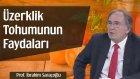 Üzerklik Tohumunun Faydaları | Prof. İbrahim Saraçoğlu