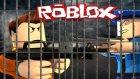 Tekrar Hapishaneye Atıldım! - Roblox Hapishane İsyan