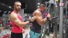 Kol Antrenmanı, Biceps ve Triceps Çalışması