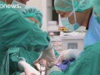 Paragöz Kaplumbağaya 7 Saatlik Ameliyat