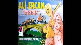 Ali Ercan - Gel Kibarım
