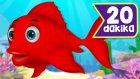 Kırmızı Balık + En Sevilen Çocuk Şarkıları | 20 Dakika Çocuk Şarkısı