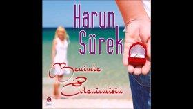 Harun Sürek - Melodi