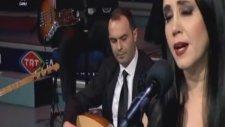 Zeynep Cihan-Bir Çift Turna Gördüm