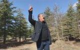 Elazığ'dan Avrupa'ya Seslenen Dayı