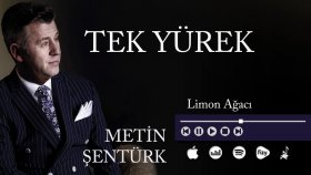 Metin Şentürk - Limon Ağacı