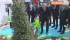 Cumhurbaşkanı Erdoğan, Ağaç Dikti