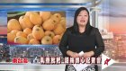 (Mar22, 2017) Taitung Cable TV News