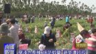 (Mar24, 2017) Kaohsiung Nango Cable TV News