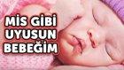 Mis Gibi Uyusun Bebeğim - Sevda Şengüler | Yepyeni Uyutan Ninni 2016