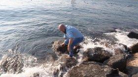 Denizde Abdest Alalım Dedik Bakın Basımıza Neler Geldi