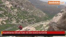 Mardin'de Kayalıklara Sıkışan Katırı, İki Gün Sonra İtfaiye Kurtardı