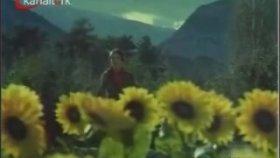 Gülden Karaböcek - Kır Çiçekleri-Hüseyin Ferdi Tayfur Koca