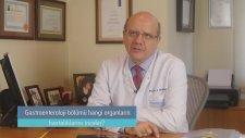 Gastroenteroloji bo?lu?mu? hangi organların hastalıklarını inceler?