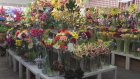 Yapay Çiçek , Toptan Yapay Çiçek