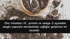 Chia Tohumunun Faydaları ve Kullanımı