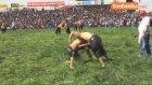 12. Döşemealtı Yağlı Güreşleri Başpehlivanlığı Orhan Okulu Kazandı