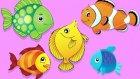 Kırmızı Balık ile Renkleri Öğreniyoruz - Çocuklar İçin Eğitici Video