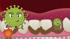 Dişlerimizi Neden Fırçalarız? - Okul Öncesi Eğitici Animasyon