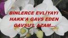 Binlerce Evliyayı Hakk'a Gavs Eden Gavsu'l Azam...