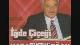 Hasan Erdoğan - DELİ POYRAZ