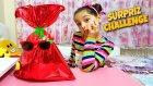 Melikeye İki Süper Hediye Ve Anneyle Harika Sürpriz Challenge !! Hangisi Daha Güzel ??