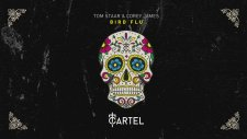 Tom Staar & Corey James - Bird Flu