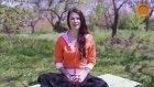 Yoganın genel felsefesi nedir?