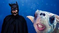 Ben Batman Olucam! - Şarkı