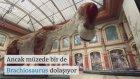 Müzede Dinozor Dolaşıyor