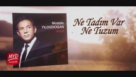 Mustafa Yıldızdoğan - Ne Tadım Var Ne Tuzum