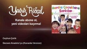 Ceyhun Çelik - Gezsen Anadolu'yu - Karaoke Version