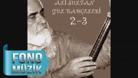 Ali Sultan - Nazlı Yare Selam Saldım Almamış