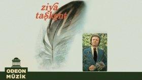 Ziya Taşkent - Türk Sanat Müziğinden Seçmeler