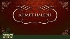 Ahmet Halepli - Kadir Mevlam Güldürmedi Yüzümü (45'lik)