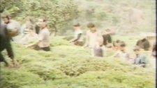 Erol Evgin - Akbank Reklam Şarkısı (1980'ler)