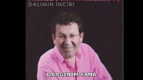 Fahrettin Karaardıç - DARGINIM SANA